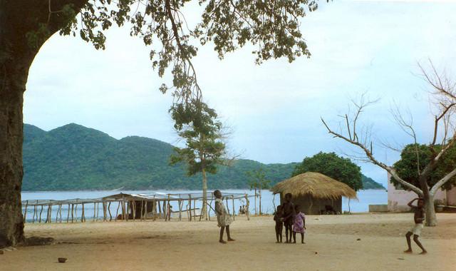 マラウイ湖国立公園の画像 p1_17