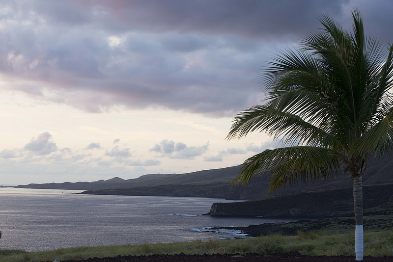 レビジャヒヘド諸島の画像 p1_6