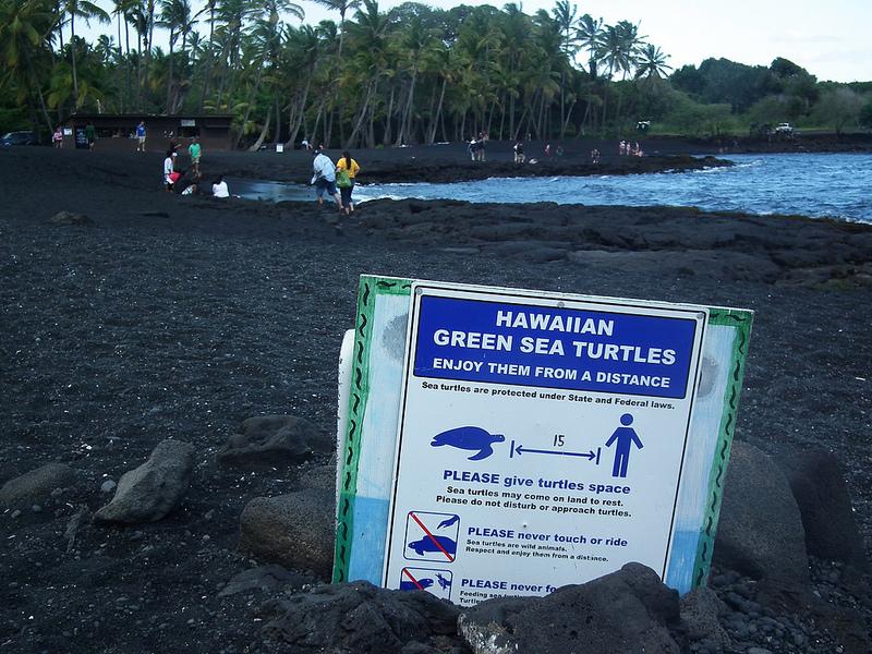 ハワイ火山国立公園の画像29