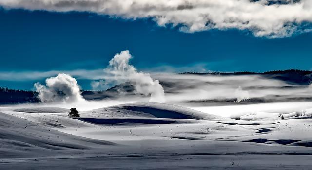 イエローストーン国立公園の画像4