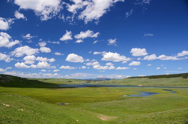 イエローストーン国立公園の画像5