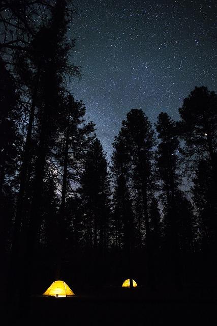 グランド・キャニオン国立公園の画像11