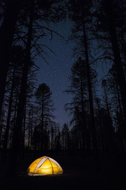 グランド・キャニオン国立公園の画像12