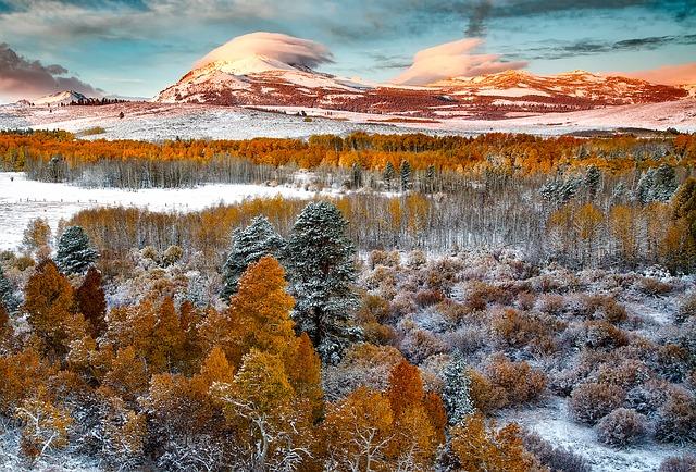 ヨセミテ国立公園の画像9