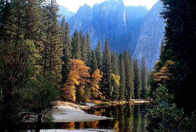 ヨセミテ国立公園の画像11