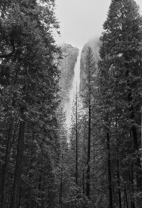 ヨセミテ国立公園の画像20