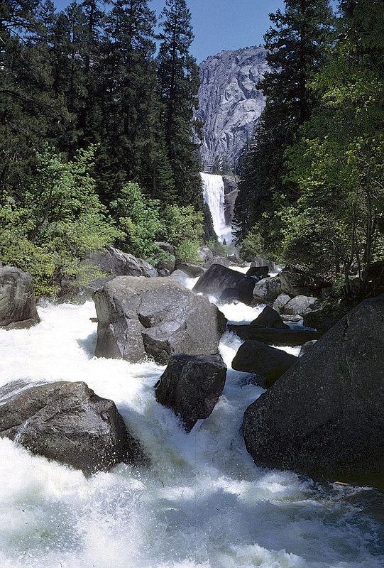 ヨセミテ国立公園の画像25