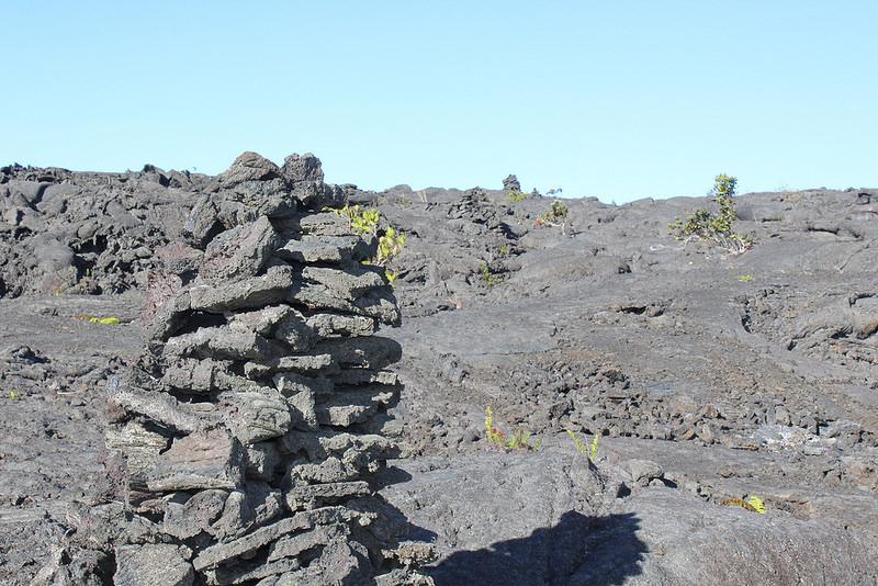 ハワイ火山国立公園の画像20