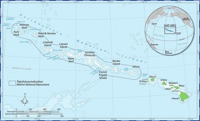 パパハナウモクアケアの画像6