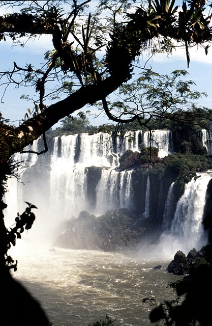 イグアス国立公園の画像3