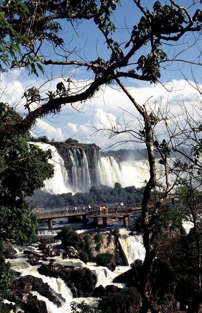 イグアス国立公園の画像4
