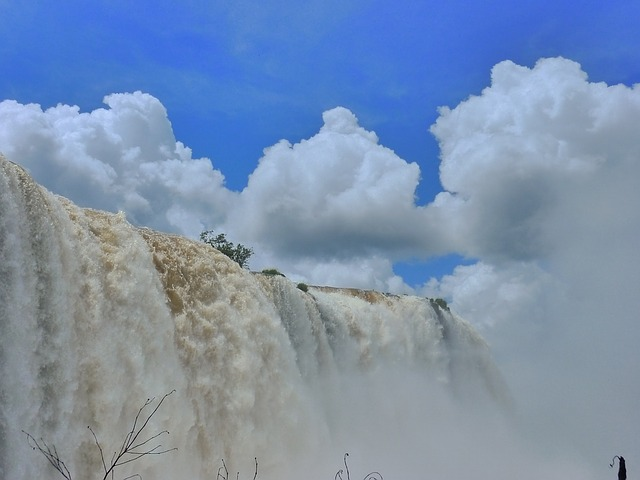 イグアス国立公園の画像7