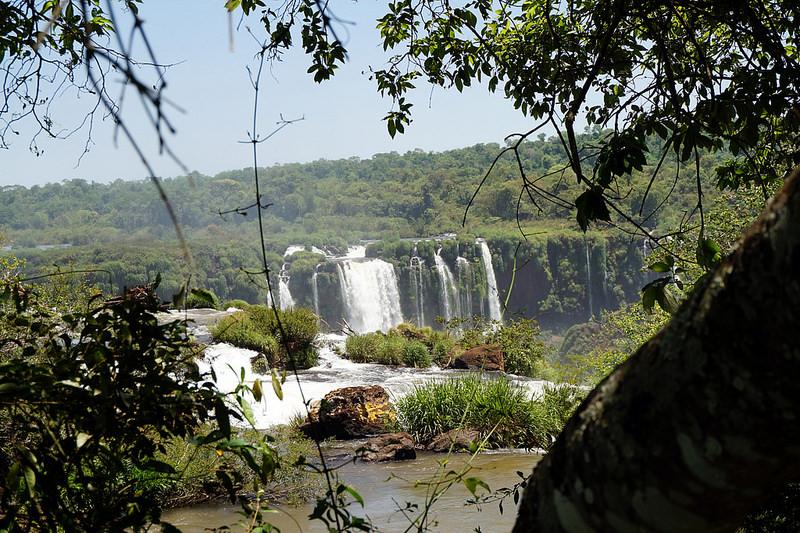 イグアス国立公園の画像19