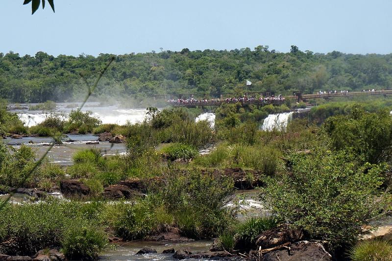 イグアス国立公園の画像20