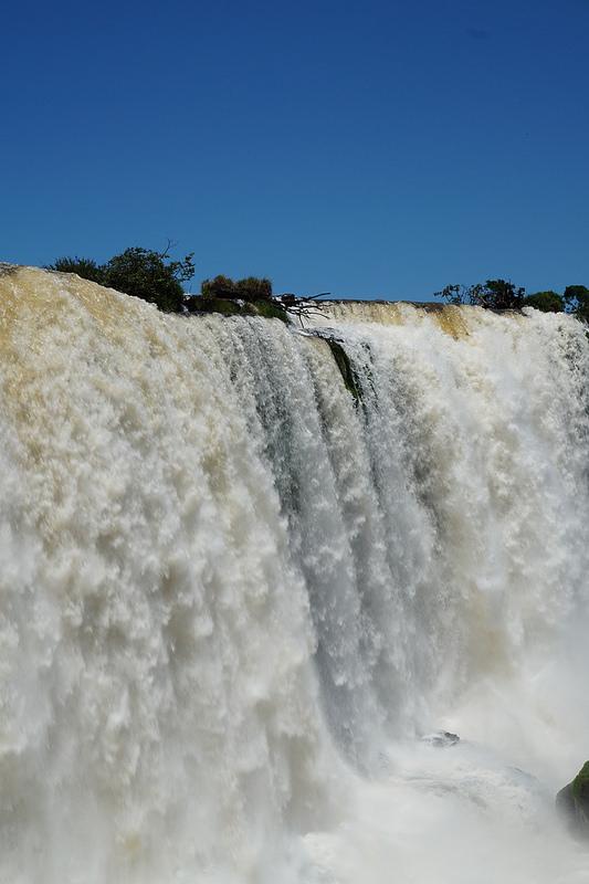 イグアス国立公園の画像29