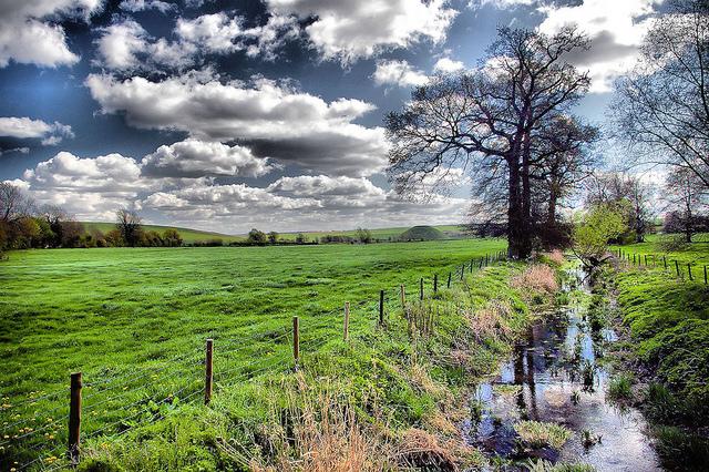 ストーンヘンジ、エイヴベリーの巨石遺跡と関連遺跡群の画像6