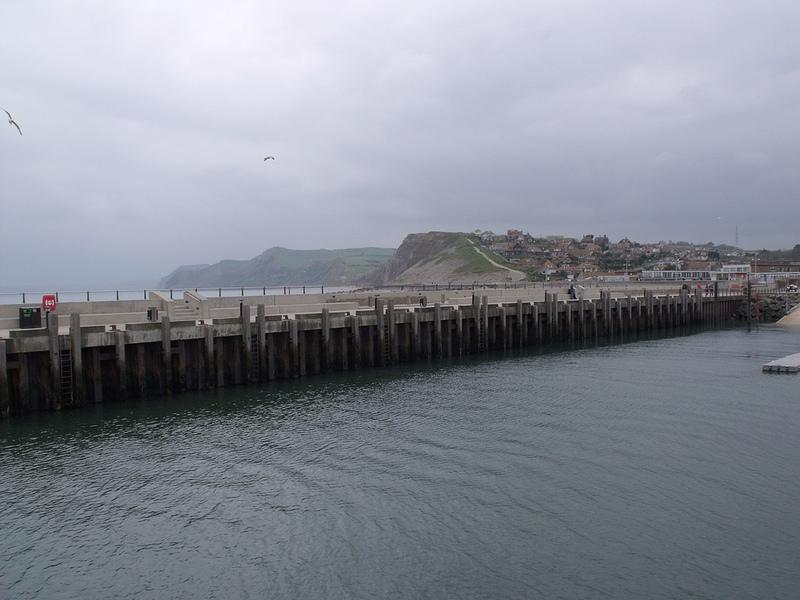 ドーセット及び東デヴォン海岸の画像8