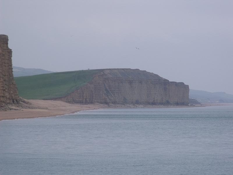 ドーセット及び東デヴォン海岸の画像15