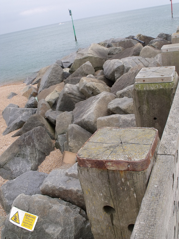 ドーセット及び東デヴォン海岸の画像17