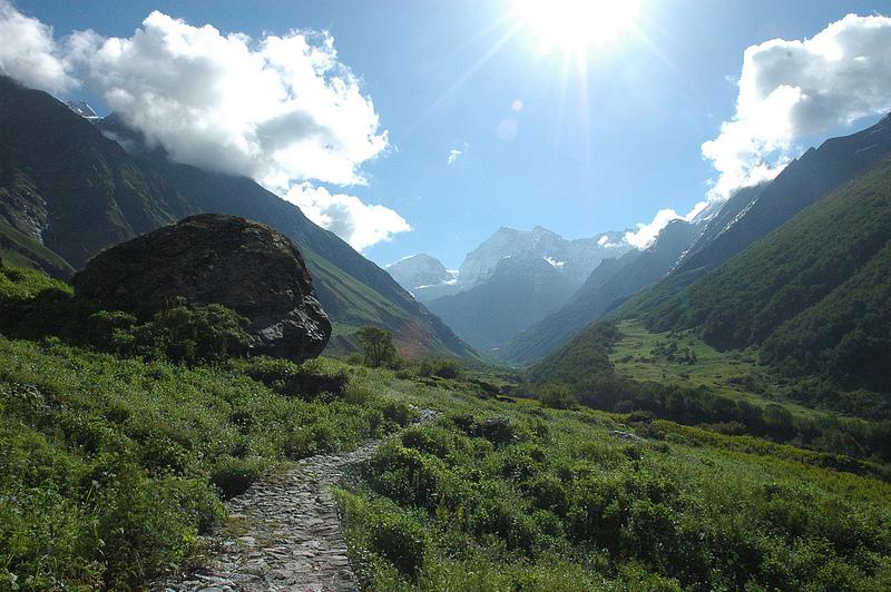 ナンダ・デヴィ国立公園及び花の谷国立公園の画像4