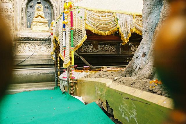 ブッダガヤの大菩提寺の画像4