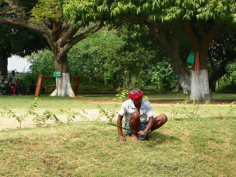 ビハール州ナーランダ・マハーヴィハーラの遺跡の画像6