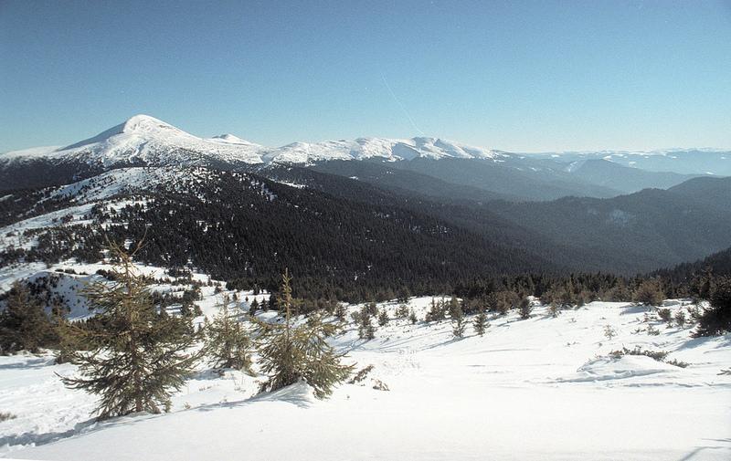 カルパチア山地と他ヨーロッパのブナ原生林の画像2