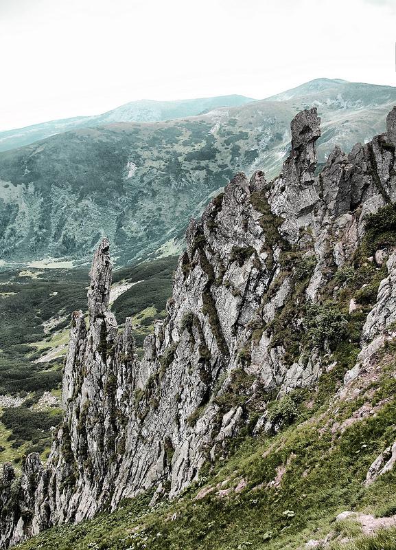 カルパチア山地と他ヨーロッパのブナ原生林の画像10