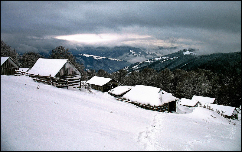 カルパチア山地と他ヨーロッパのブナ原生林の画像15