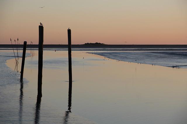ワッデン海の画像1