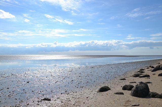 ワッデン海の画像8