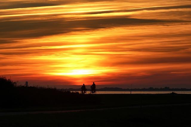 ワッデン海の画像9