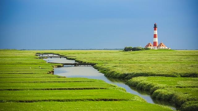 ワッデン海の画像10