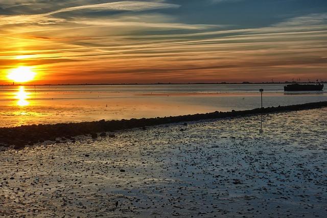 ワッデン海の画像14