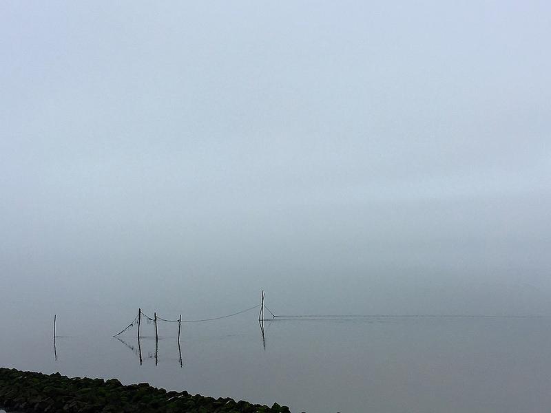ワッデン海の画像18