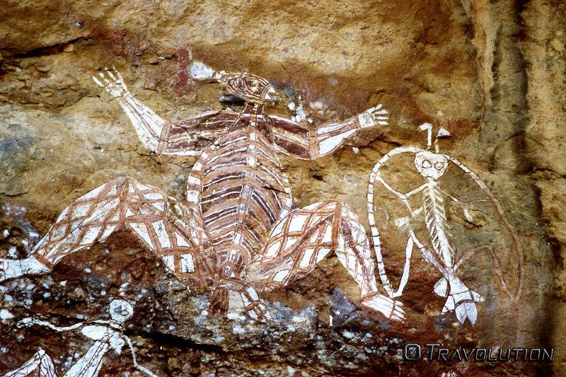 カカドゥ国立公園の画像8