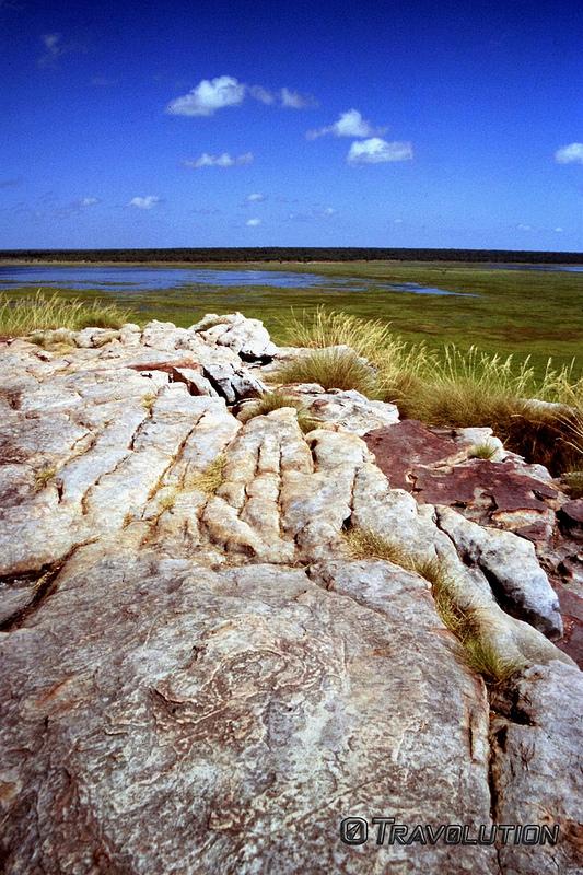 カカドゥ国立公園の画像11
