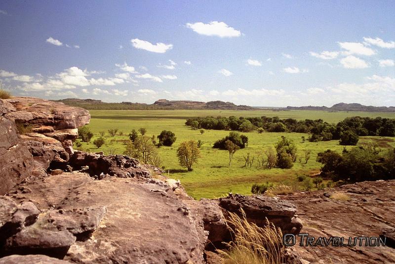 カカドゥ国立公園の画像20