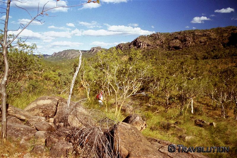 カカドゥ国立公園の画像24