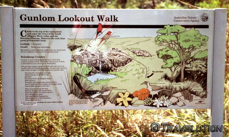 カカドゥ国立公園の画像25