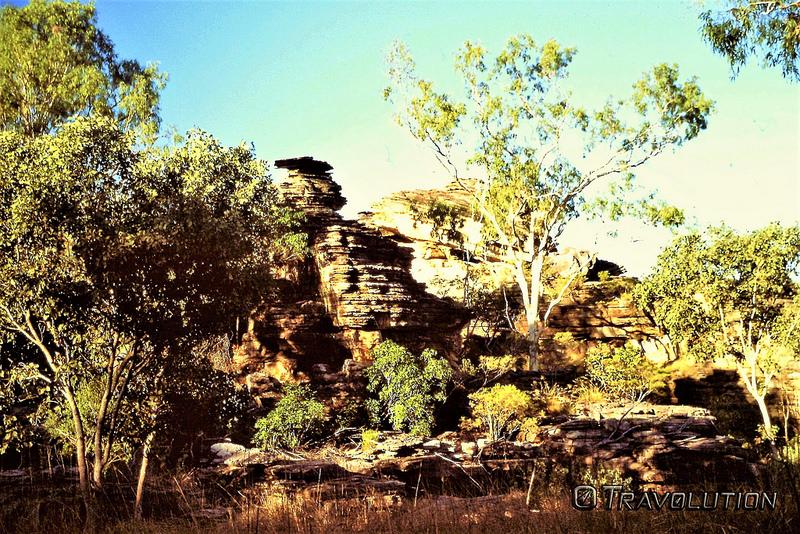 カカドゥ国立公園の画像28