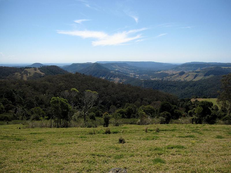 オーストラリアのゴンドワナ雨林の画像10