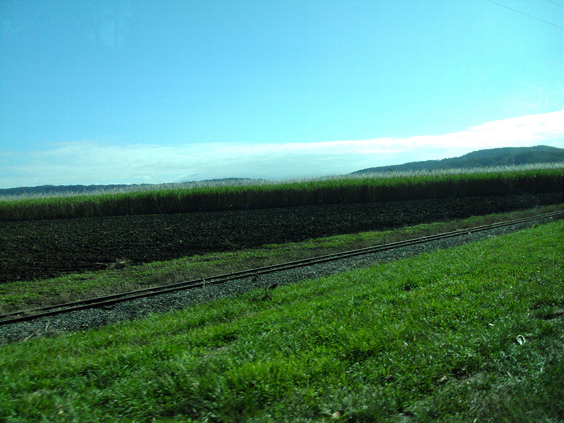 クインズランドの湿潤熱帯地域の画像4