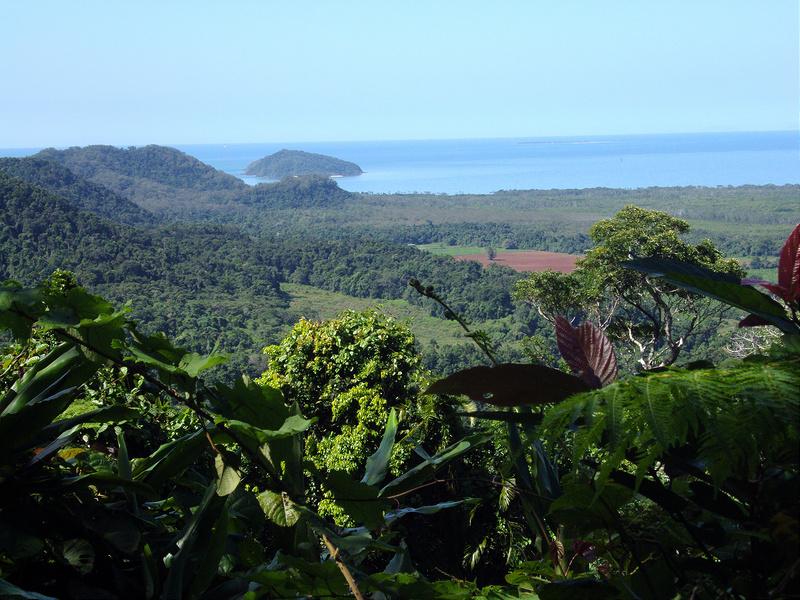 クインズランドの湿潤熱帯地域の画像9
