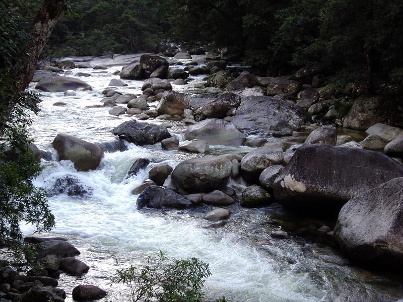 クインズランドの湿潤熱帯地域の画像14