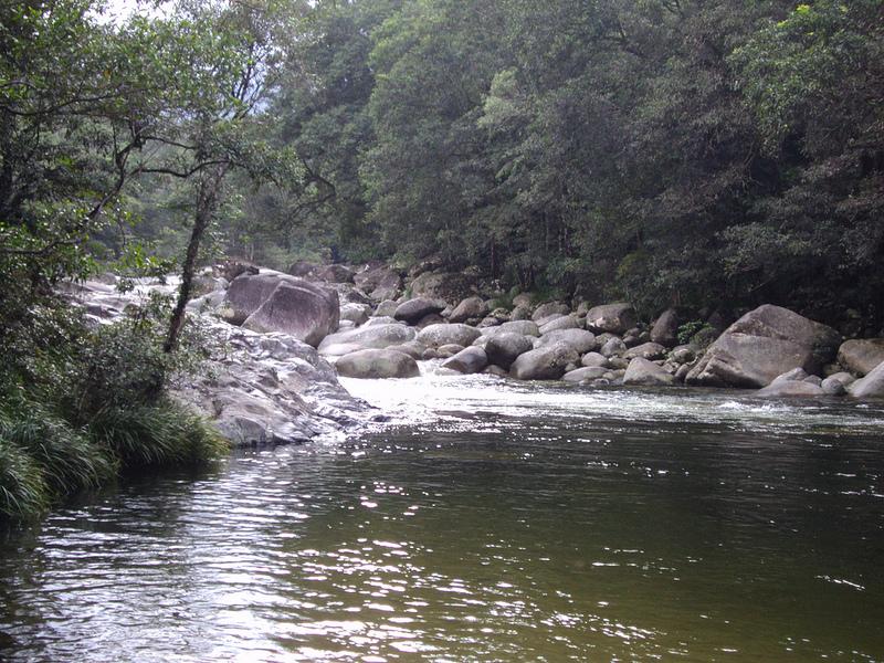 クインズランドの湿潤熱帯地域の画像16