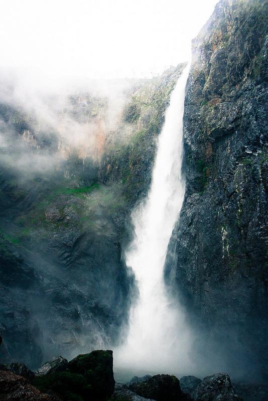 クインズランドの湿潤熱帯地域の画像18
