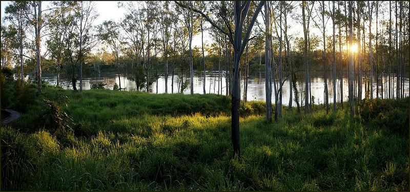 クインズランドの湿潤熱帯地域の画像19