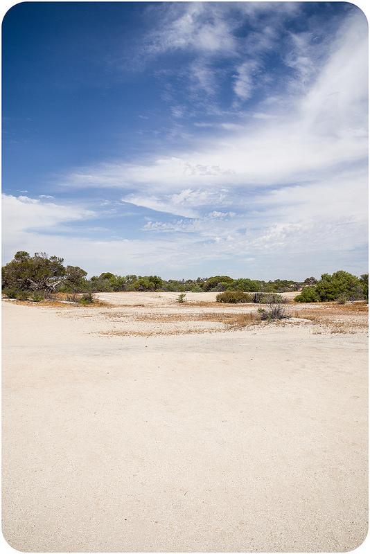 西オーストラリアのシャーク湾の画像5
