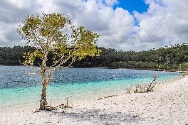 フレーザー島の画像8